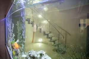 Лестница за 1,5 млн рублей_18